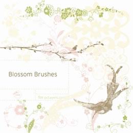 4_pm_a1crj_blossom_brushes
